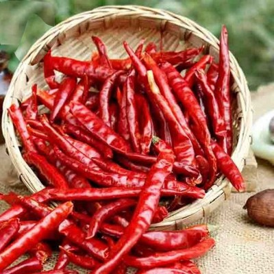 Red Chili Whole